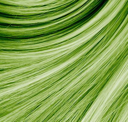 0.10 verde savia